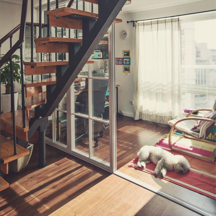 常见的细框玻璃门,在家也能实现!|装修知识-新乡市天蓥阔达装饰工程有限公司